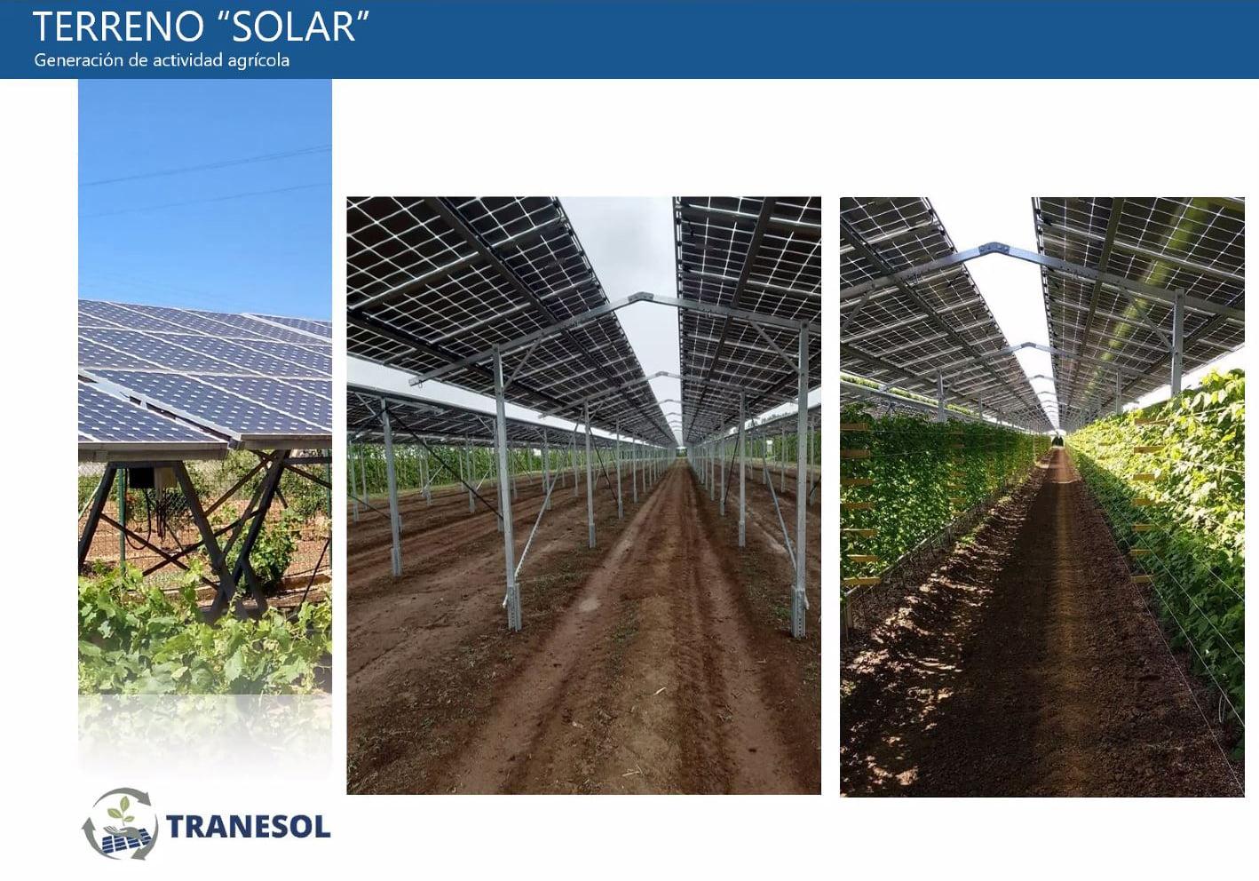Comunidades Energéticas Renovables Agro-fotovoltaicas-03